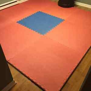 Exercise mats double sided St. John's Newfoundland image 1