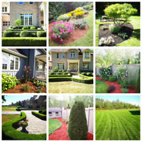 Landscaping , Leaves clean up, Fall clean, Gardening services.