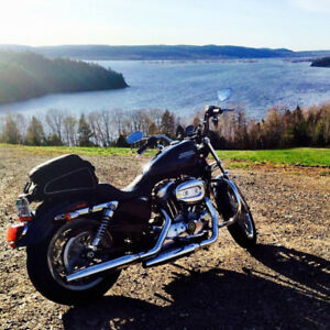 2008 Sportster XL- 883  for sale