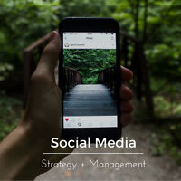 Experienced Social Media Team Looking for New Clients