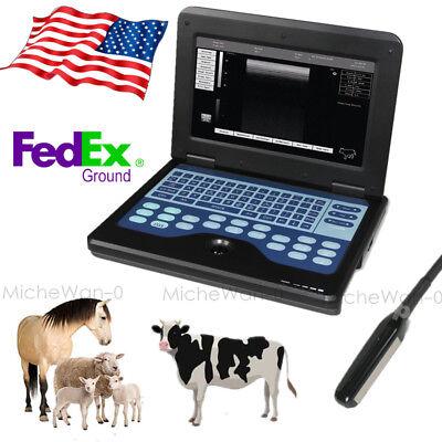 Vet Laptop Ultrasound Scanner Digital Machine Rectal For Cow Horse Animals