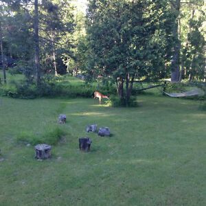 Cosy, Winter Getaway, Furnished, Utilities Included,  Chelsea Gatineau Ottawa / Gatineau Area image 9