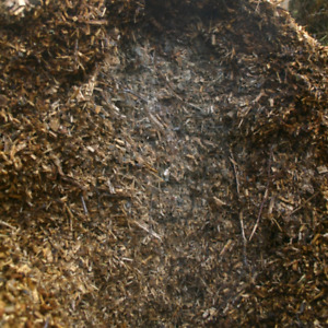 Looking Free mulch/wood chips/compost/ramiel chips