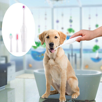 Pet Oral Dental Care Electric Toothbrush Massage Tooth Brush for Dog Puppy Cat