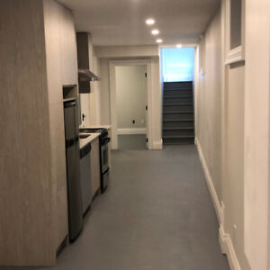 Newly Renovated Basement Apartment--Roncesvalles