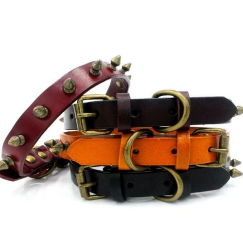 Spiked Studded Padded Leather Dog Collars For Small Medium D