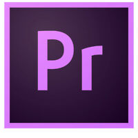 Low-cost Professional Video Editor