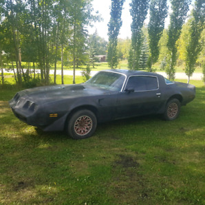 1981 Firebird Trans Am.