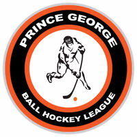Recreational Ball Hockey Group is looking for teams and players
