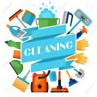 === PROFESSIONAL CLEANING SERVICE ====
