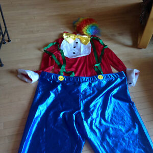 CLOWN COSTUME WITH WIG, TOP, & PANTS