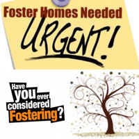 Looking For Child Youth Counsellors & Foster parents in Sudbury