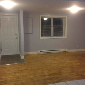 2 Bedroom Apartment for Rent on Southside Road St. John's Newfoundland image 2