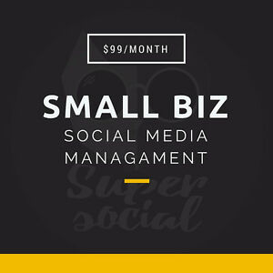 SOCIAL MEDIA MANAGEMENT FOR SMALL BUSINESS BUDGETS ($99/MO) Kitchener / Waterloo Kitchener Area image 1