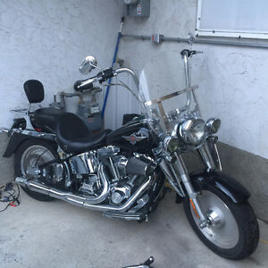 Softail Fatboy needs a new home