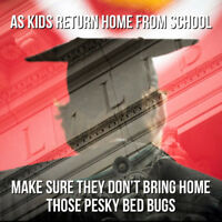 Kids returning from school with bed bugs?