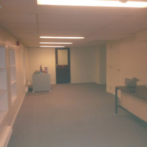 Office suite in commercial bldg downtown Napanee $500 all in