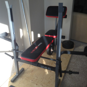 WEIDER PRO   245  Workout Bench