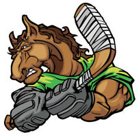 Standby Billet Families Needed for Essa Stallions Players