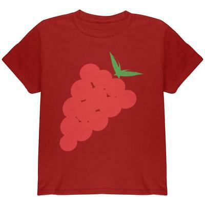 Halloween Red Grapes Costume Youth T Shirt](Halloween Costume Grapes)