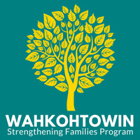 Free Family Skill Building Certificate Program!