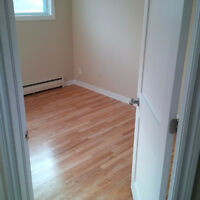 Large 3 Bedroom close to City Hospital- Heat/Hot water Inc.