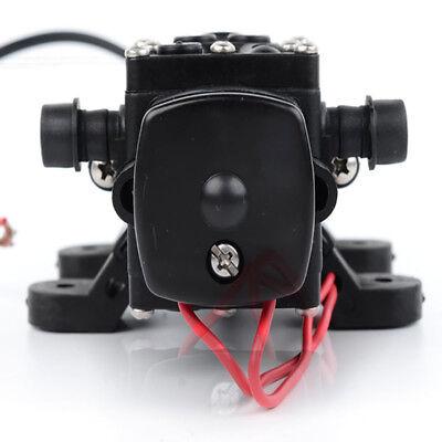12v Mini Diaphragm High Pressure Self Priming Agricultural Electric Spray Pump