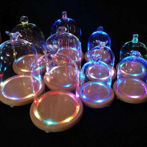 Groß H 15/18/20/25cm Glasglocke Glaskuppel LED Leuchtet Holzteller Glashaube Set