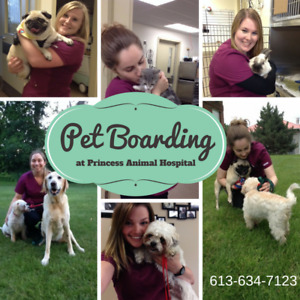 Book NOW for the Holidays!  Pet Boarding at Princess Animal Hosp