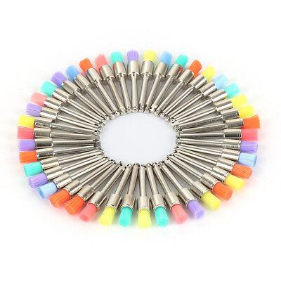 100 Pcs Dental Lab Nylon Closure Small Flat Polishing Polisher Prophylaxis Brush