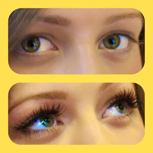 promo:Eyelash extension,keratin lift,tinting eyebrows/lash West Island Greater Montréal image 8