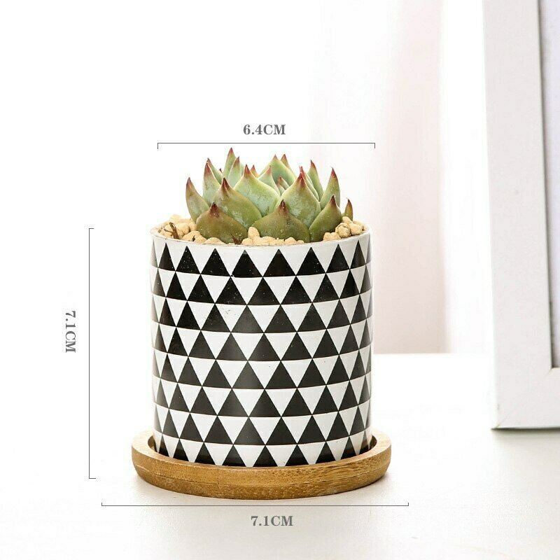 2020 New Geometric Pattern Ceramics Flower Pot for Succulent Plant Pot  Coaster