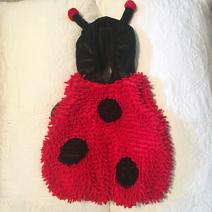 *Like New* 12-18 month Ladybug Costume