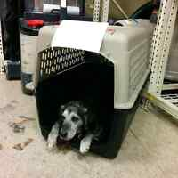 Portable Kennel - Best offer takes it