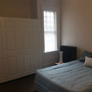 Large 2 Bedroom + Finished Basement in Century Home Downtown Kitchener / Waterloo Kitchener Area image 8