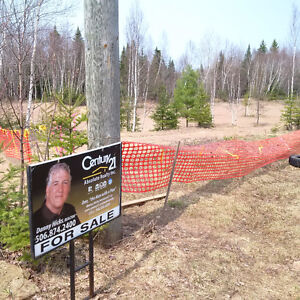 IRISHTOWN Rd & Privacy is at a Premium~ Only 10-12 mins to town!
