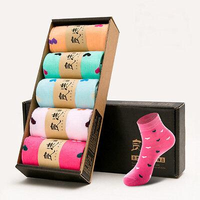 2016 New Style Womens Socks Cute Casual Cozy Cotton Women Ladies Long Socks Hot
