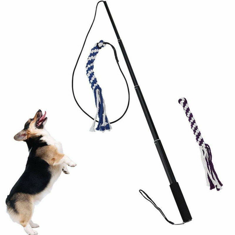 Details about Interactive Dog Toys Extendable Flirt Pole Outdoor Funny Chasing Tail Teaser Pet