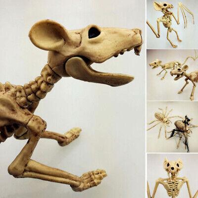 Gruselige Skelett Fledermaus Ratte Gruselige Dekoration Halloween - Halloween Skelett Dekoration