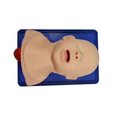 Teach Model Advanced Infant Tracheal Intubation Education Training Lab Supply