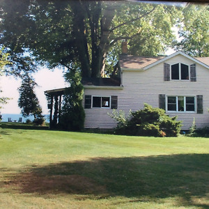 Last Minute On-the-Water (Pet Friendly) Cottage  July 28 - Aug 4
