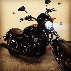 2015 Harley Street 750 Low Km's Mint