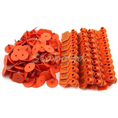 Orange 1-100 Number Plastic Livestock Ear Tag Animal Tag For Goat Sheep Pig