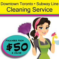 Downtown Maid Condo Housekeeping Business Cleaning Service