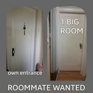 Wanted Roommate