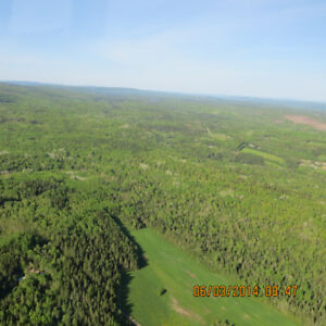 250 ACRES OF WOODLAND FOR SALE, QUIRK RD NEAR SUSSEX, NB