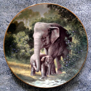 """Asian Elephant"" Collector Plate"