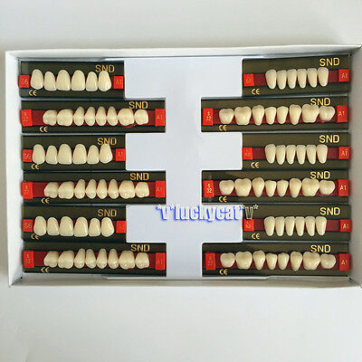 3sets Dental Acrylic Resin Teeth Two-layer A1 Shade Full Mouth Set S6 L62 S32