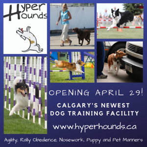 Puppy, Obedience, Agility, Nosework, Rally, Kids program