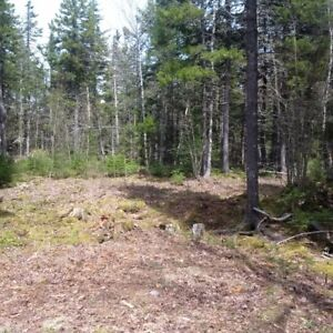 5.3acres/1 hr from Hfx. Will finance. Cottage Country